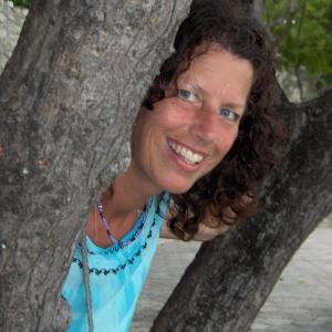 2007 in Haiti