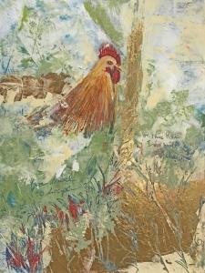 chicken scratch web